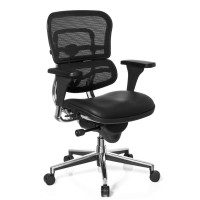Ergohuman v1 Office chair, leather seat and mesh backrest