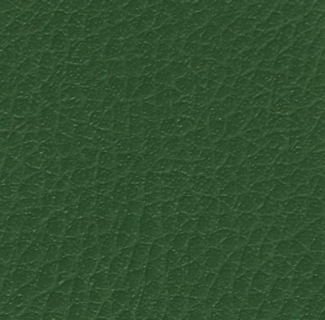 Skay Verde